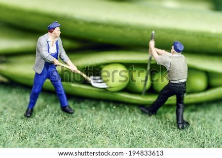 Green bean farmer miniature toy figure - stock photo