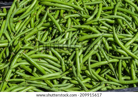 Green beans in a bulk display at the farmers market - stock photo