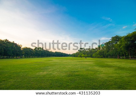Green beautiful park and blue sky in evening - stock photo