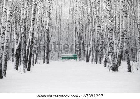 Green Bench. A view of a small green bench in the winter park. Nobody around. Snowfall and silence. No traces. Just white space and black and birch trees. The Christmas mood. Canvas texture added. - stock photo