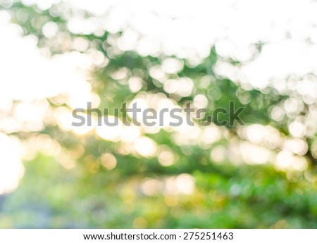 Green Bokeh texture or background, blur circle. - stock photo