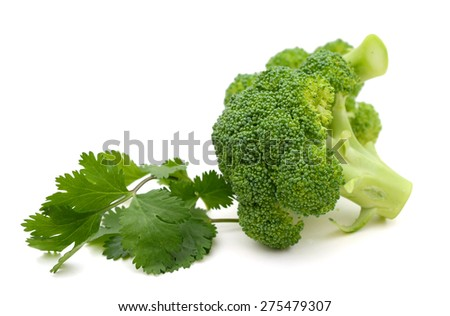 green broccoli and cilantro isolated on white  - stock photo