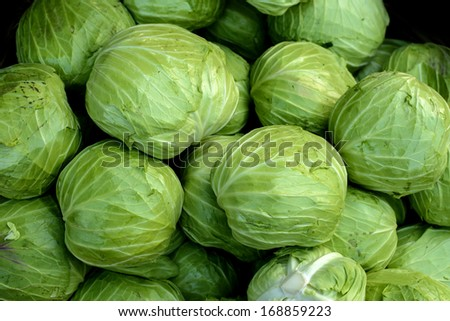 Green cabbage - stock photo