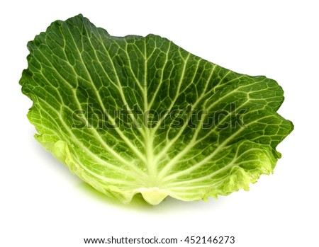 green cabbage isolated on white - stock photo