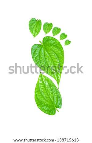Green Carbon Foot Print Concept made from tree leaf - stock photo