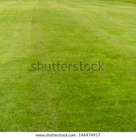 Green carefully tended lawn - stock photo