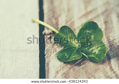 Green clover leaf on wooden background, close up - stock photo