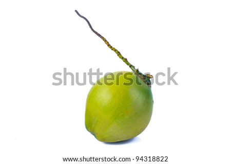 Green coconut isolated on white background - stock photo