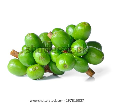 Green coffee beans isolated on white - stock photo