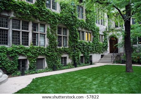 Green Courtyard - stock photo