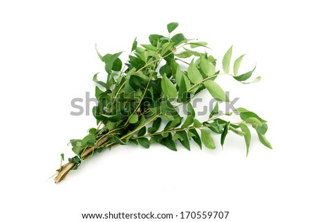 Green curry OR Sweet neem leaves - stock photo