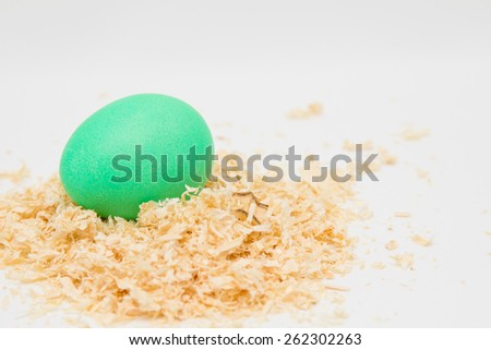 Green easter egg on sawdust - stock photo