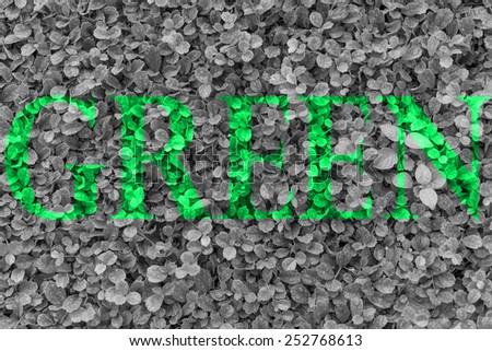 green eco - stock photo