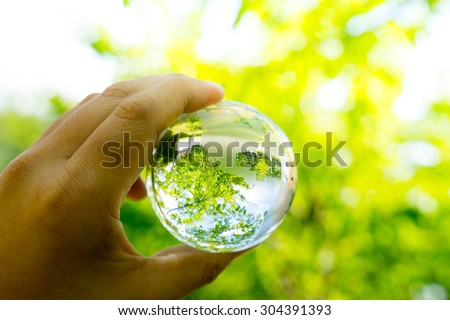 Green & Eco environment, glass globe in the garden - stock photo