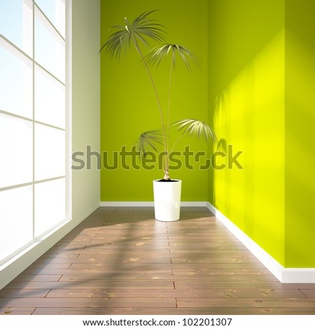 green empty interior with palm - stock photo