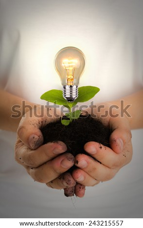 Green energy concept : Bulb of plant on women hand - stock photo