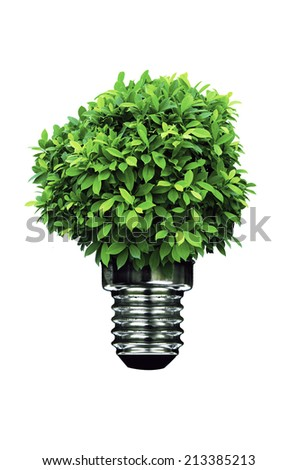 Green Energy in white background. - stock photo
