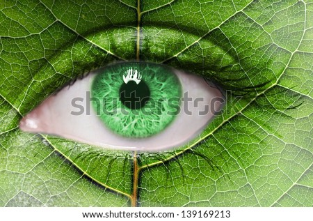 Green eye close up and leaf texture on face. Ecology concept  - stock photo