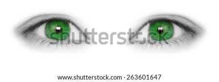 Green eyes isolated on white background - stock photo