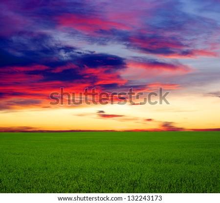 green field and beautiful sunset - stock photo