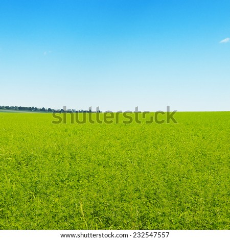 green field and blue cloudless sky - stock photo