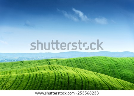Green field and blue sky. Italy, Tuscany - stock photo