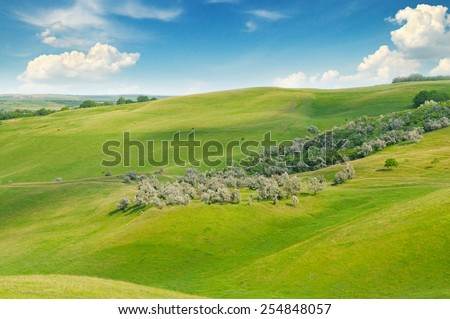 green field and blue sky with light clouds - stock photo
