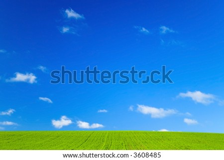 Green field and blue sky with white fluffy clouds - stock photo