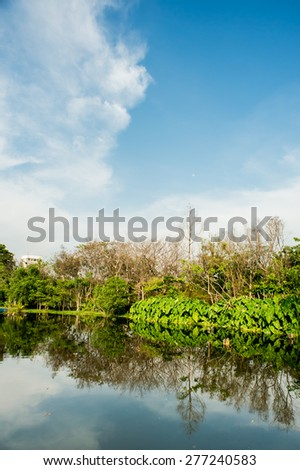 Green field and cloudy sky,park - stock photo