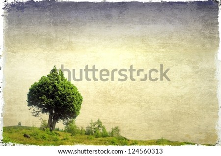 Green field and pair of trees heart-shaped - stock photo