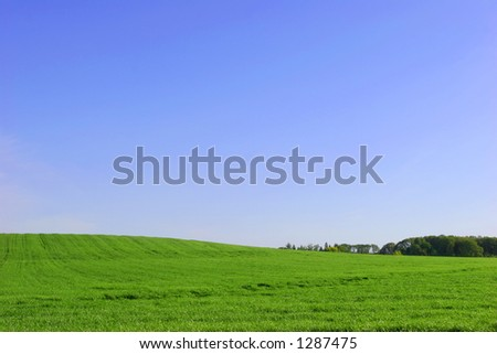 Green Field and Sky - stock photo
