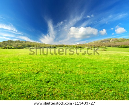 Green field and sky. Agricultural composition - stock photo