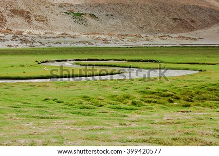 Green field and small river - stock photo