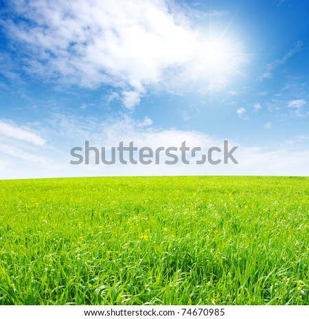 Green field and sun - stock photo