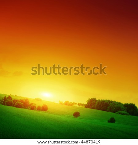 Green field at sunset. - stock photo