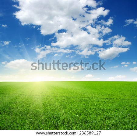 Green field, blue sky and sun  - stock photo