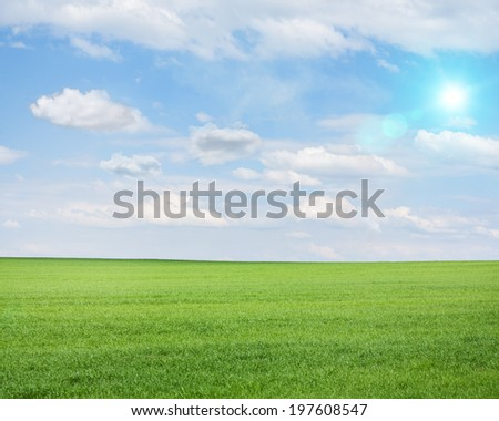 Green field on a sunny summer day shot with tilt and shift lens - stock photo