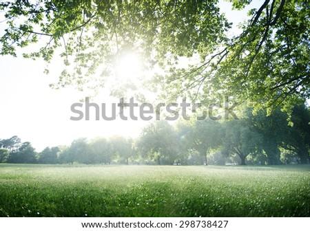 Green Field Park Environment Scenic Concept - stock photo