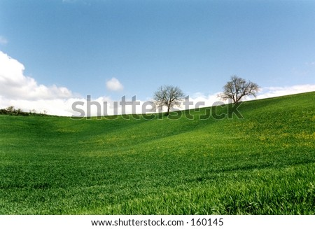 green field - tuscan landscape #1 - stock photo