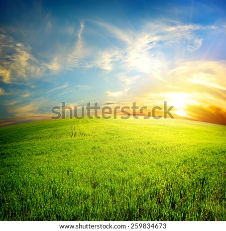 Green field under beautiful clouds at sunrise - stock photo