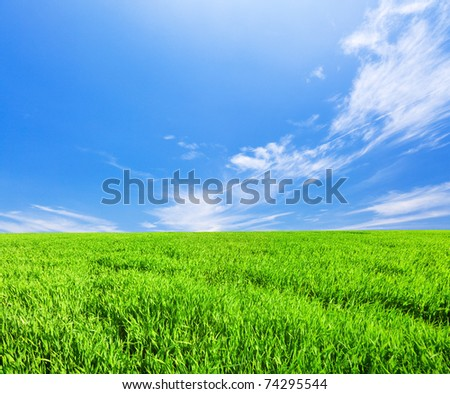 Green field under blue cloudy sky - stock photo