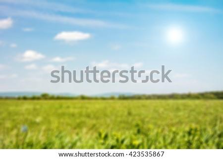 Green field under blue sky blur background. Defocused image, blur of fresh green spring summer landscape with sun shining. Field of green grass and sky. Background with cloudy sky and grass.  - stock photo