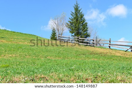 Green field with a rustic wooden fence and evergreen pine tree on the skyline under a sunny blue sky - stock photo