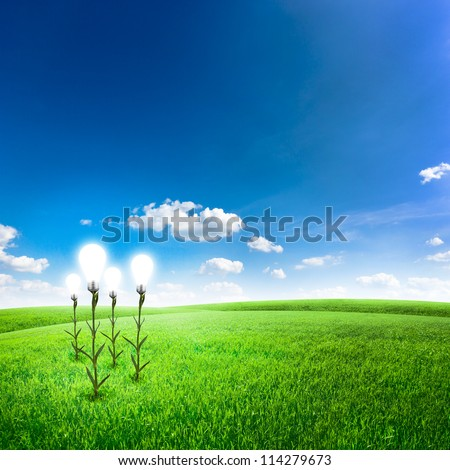 Green field with abstract flower lightbulb under blue sky. Green energy concept background - stock photo