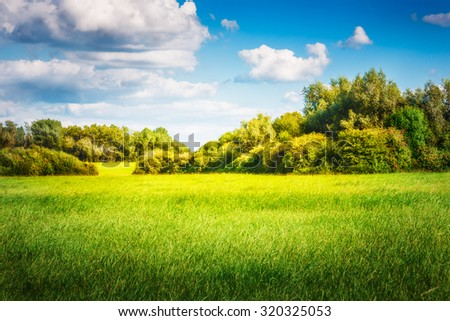 Green field with trees and blue sky. Nature landscape in summer - stock photo