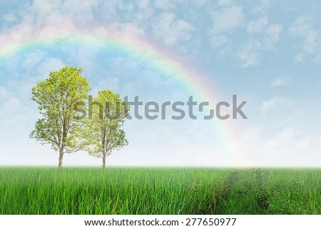 Green field with trees and rainbow - stock photo