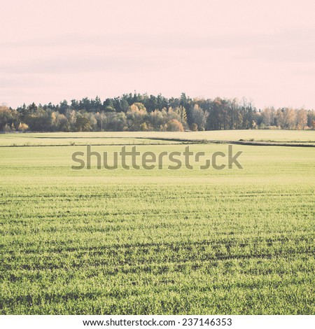 green field with trees in the autumn in country - retro, vintage style look - stock photo