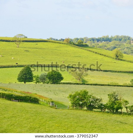 Green Fields in the Saint Catherine's Valley Near the City of Bath in England - stock photo