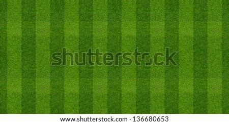 Green flat field astro fine grain pitch - stock photo