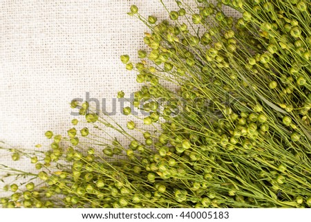 Green flax twigs with linen seeds on a white linen rustic background, close up, top view - stock photo